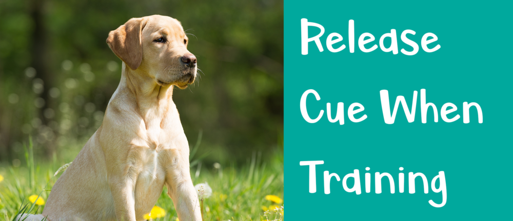 Please Release Me – Dog Training Tips