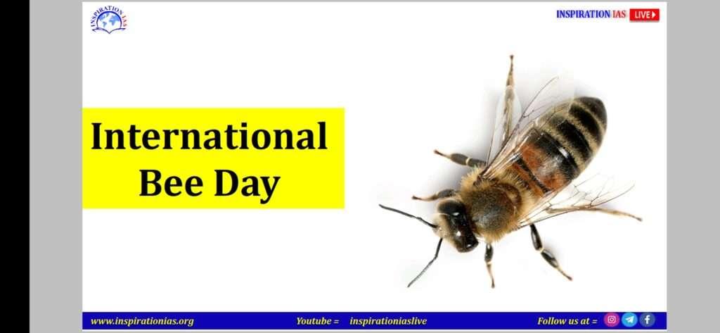 INTERNATIONAL BEES DAY