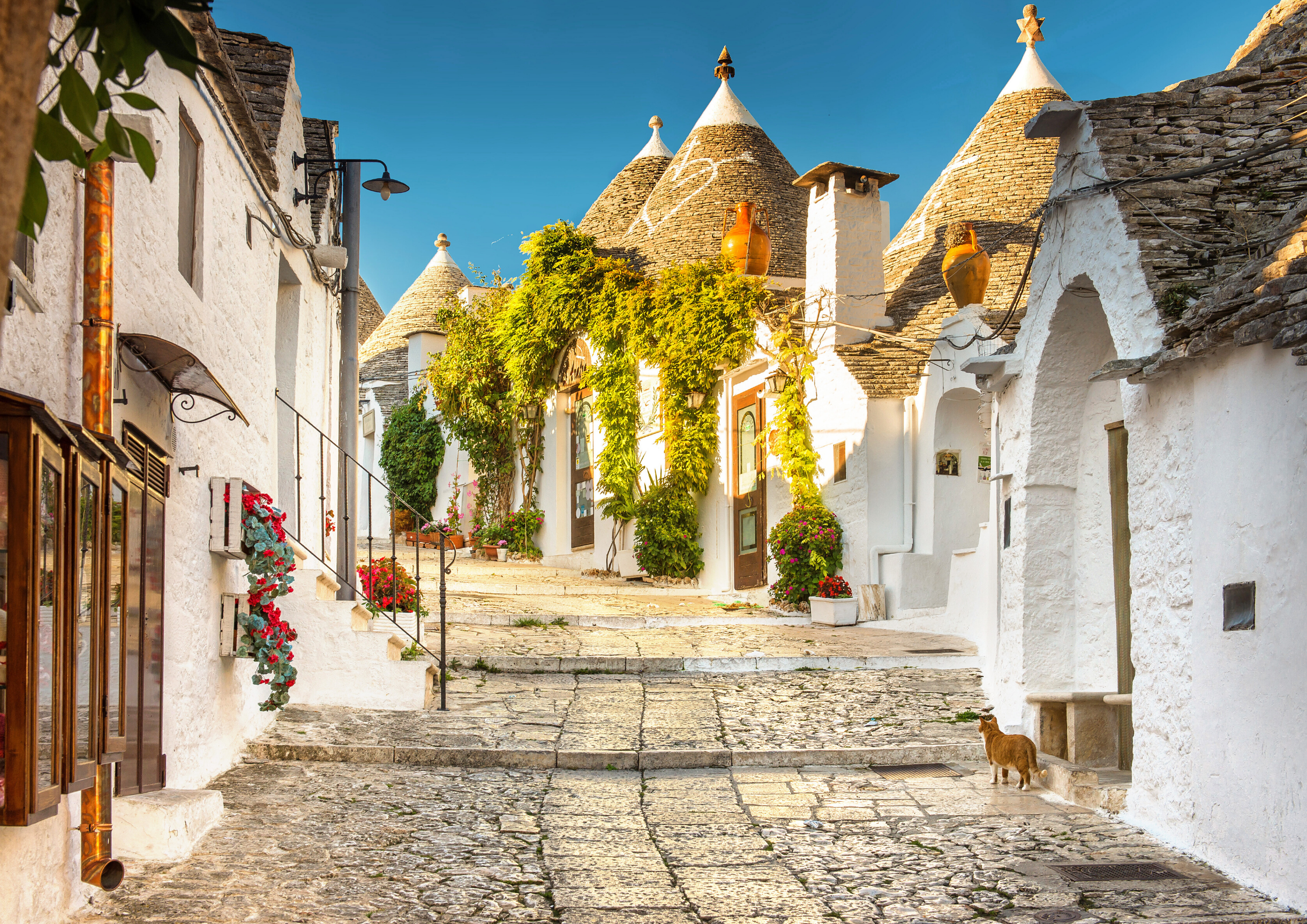 TOP CITIES TO VISIT IN PUGLIA, ITALY