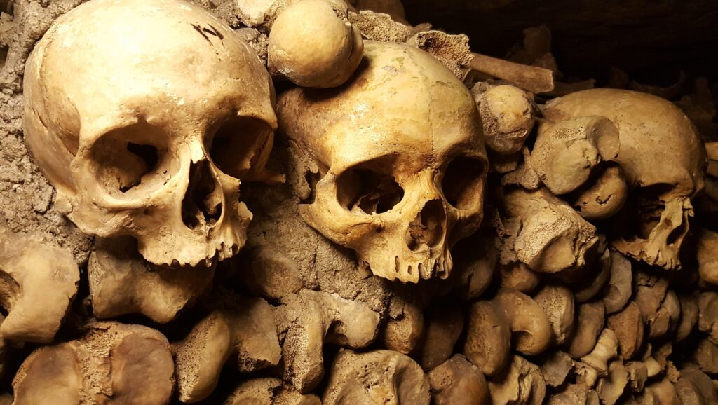 Picture of human skulls from a catacomb