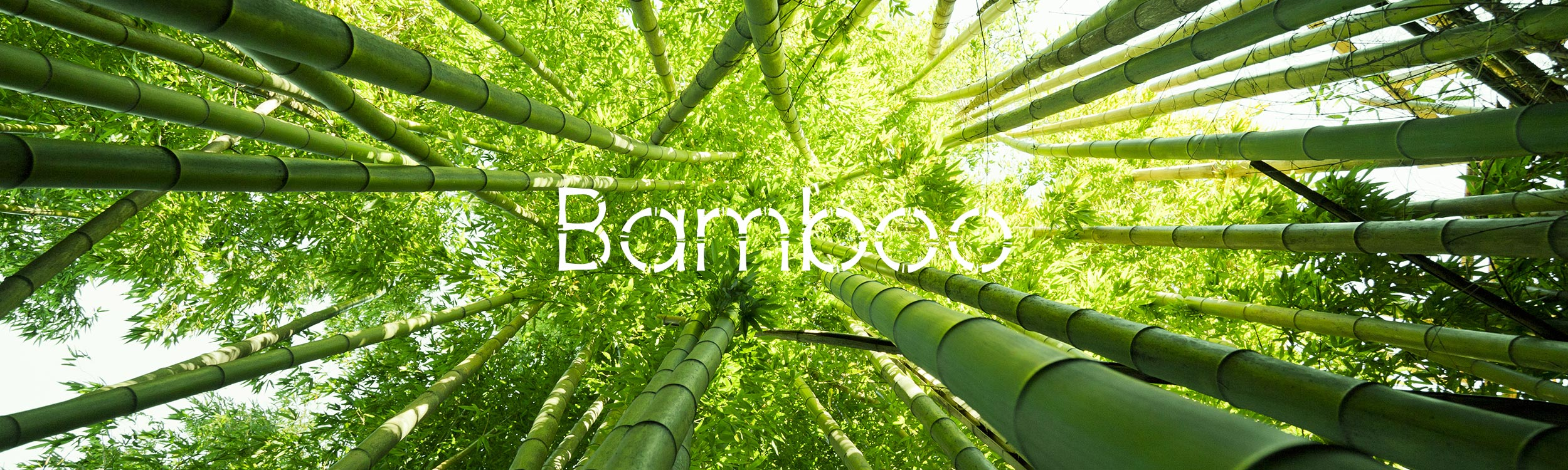 Andrew Black Bamboo Sustainably-sourced Bamboo Fabric