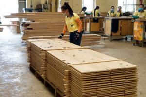 Yêu cầu mới đối với gỗ sinh khối để sản xuất nhiệt và điện