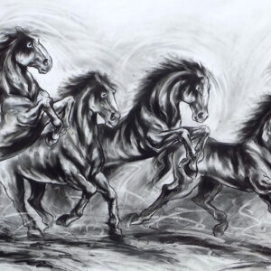 Drawing of Horses with charcoal on paper