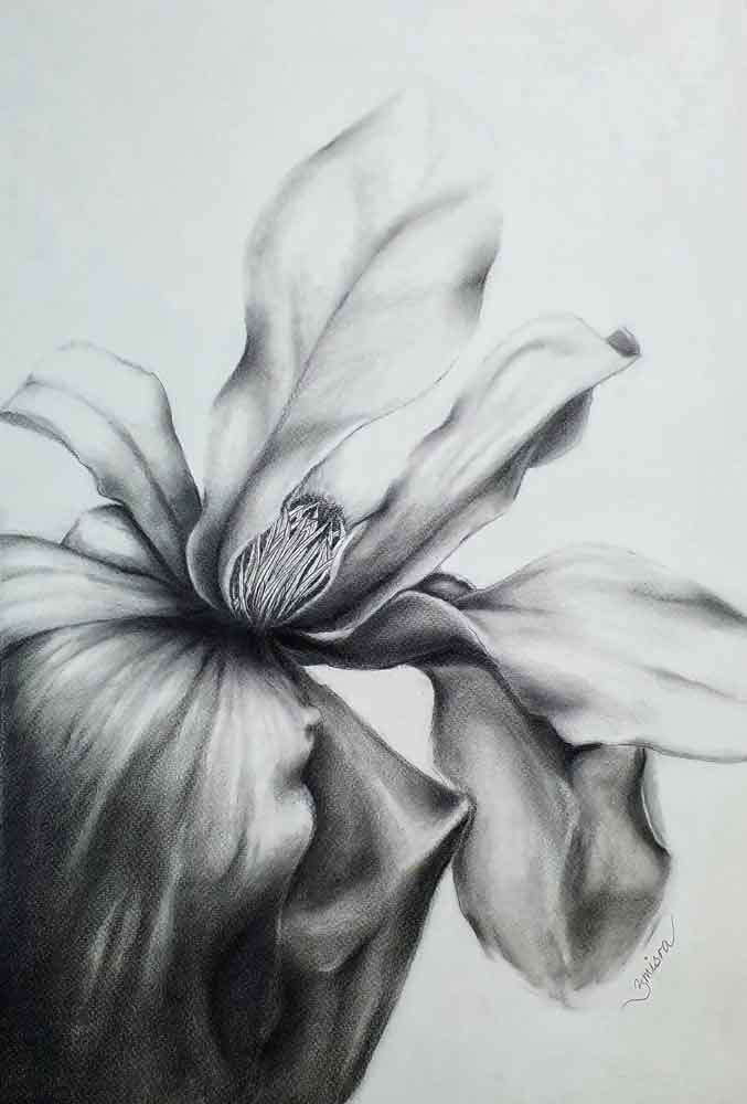 Sketch on paper with graphite