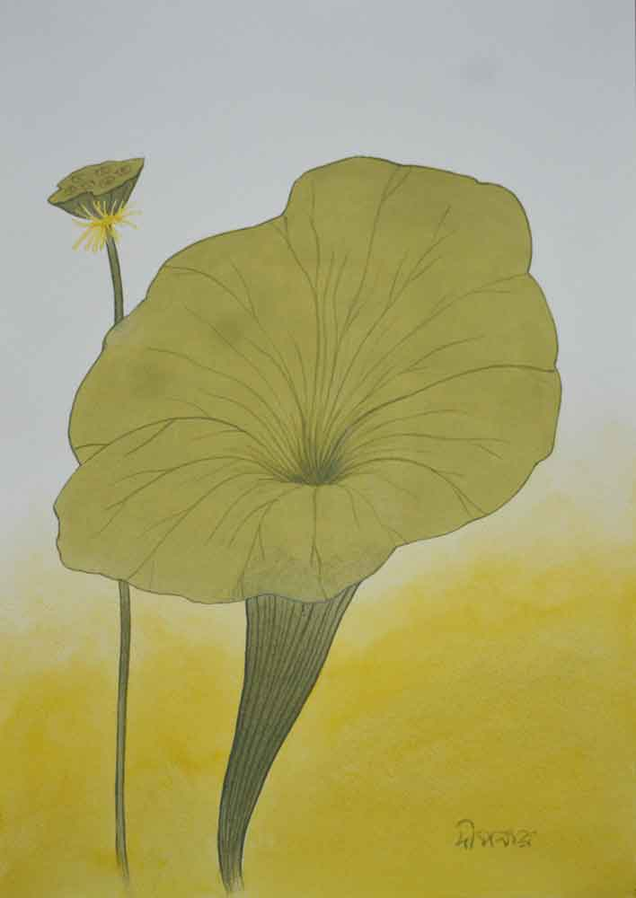 Painting on paper of lotus
