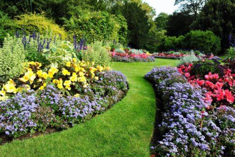 Top Drawer Construction landscape gardening and patio design service Woking Weybridge Surrey