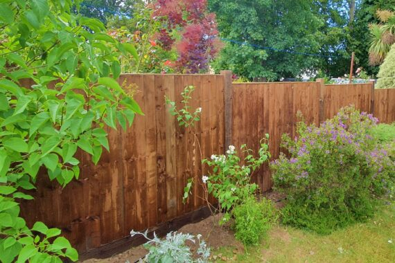 Top Drawer Construction installed four foot dark brown wooden garden fence surrounded by shrubbery and grass