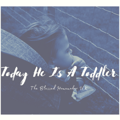 Blogtober Day 8 – Today He Is A Toddler