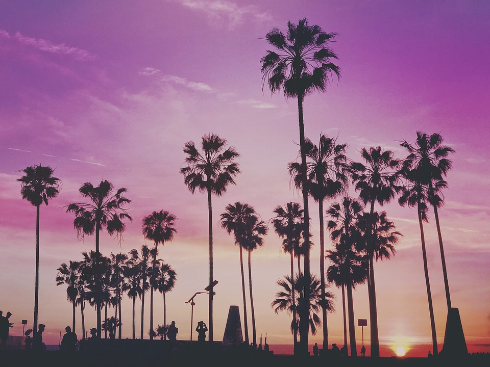 sunset-sobe-olives-margarita-bra-never-drink-miami-elle-blonde-travel-luxury-lifestyle-destination-blog
