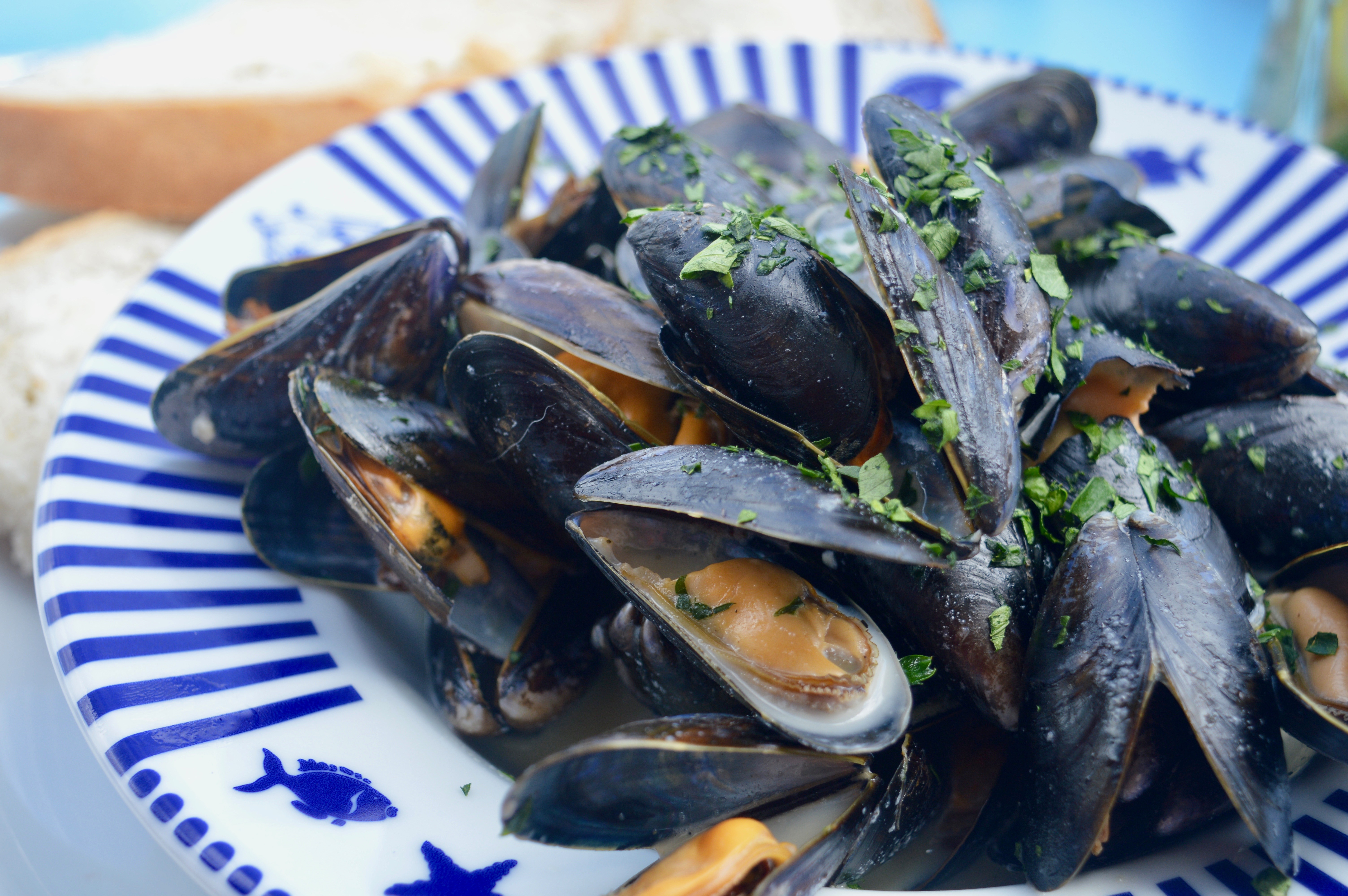 Mussels-Crab-Waltzer-Review-Whitley-Bay-Seaside-Cafe-Elle-Blonde-Luxury-Lifestyle-Destination