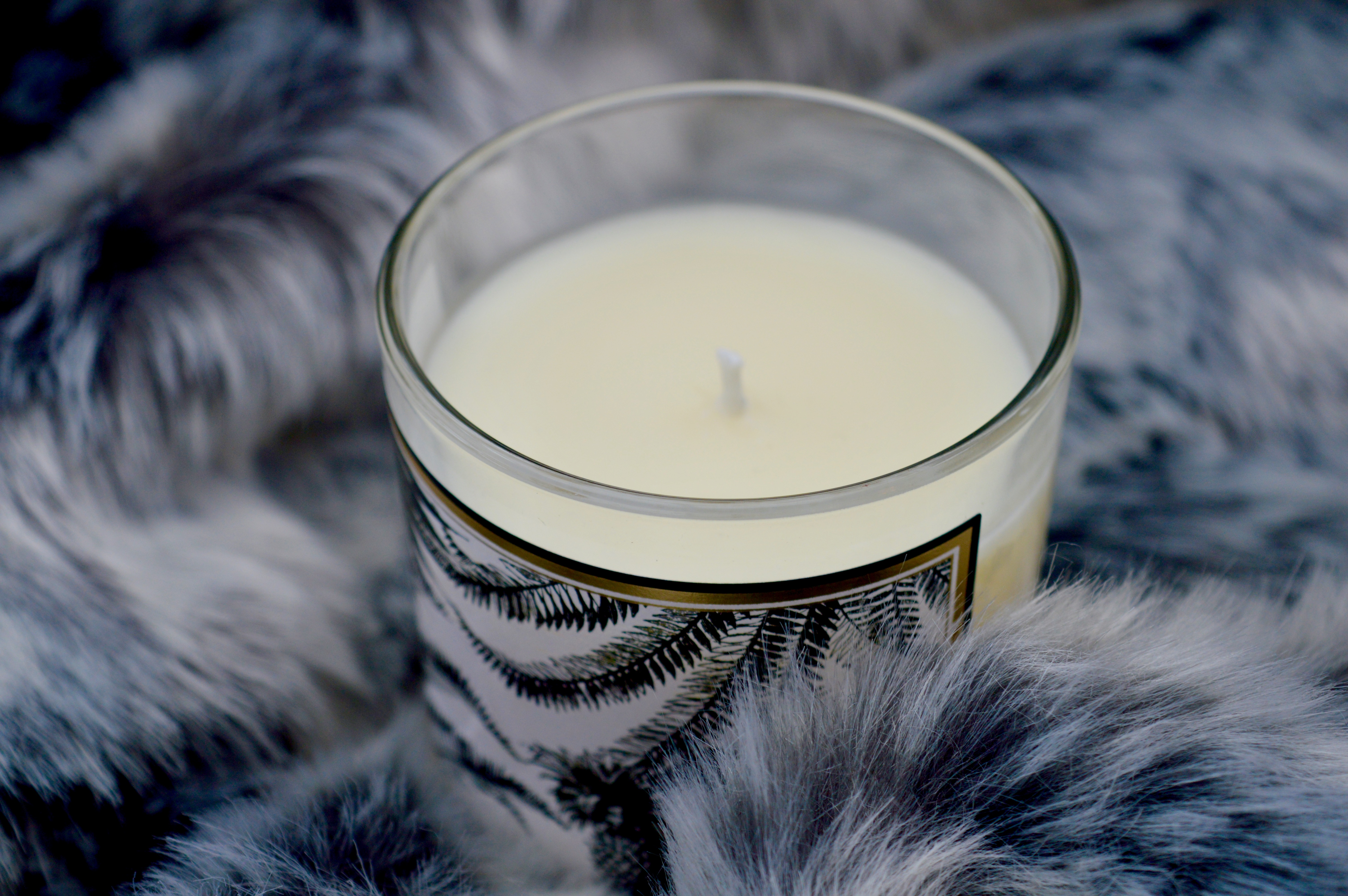 Chase and Wonder   Luxury Scented Candle   Tropical Paradise   What to buy the first time home owner   Home Interiors   Elle Blonde Luxury Lifestyle Destination Blog