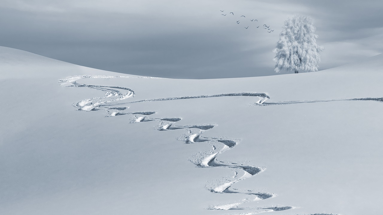 Top 10 ski destinations for beginners | Cross country skiing in the winter | Travel Guide | Elle Blonde Luxury Lifestyle Destination Blog