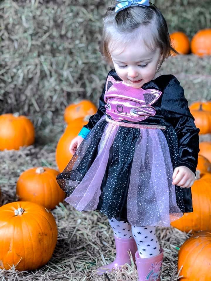 Halloween Pumpkin Patch Picking | Elle Blonde Luxury Lifestyle Destination Blog