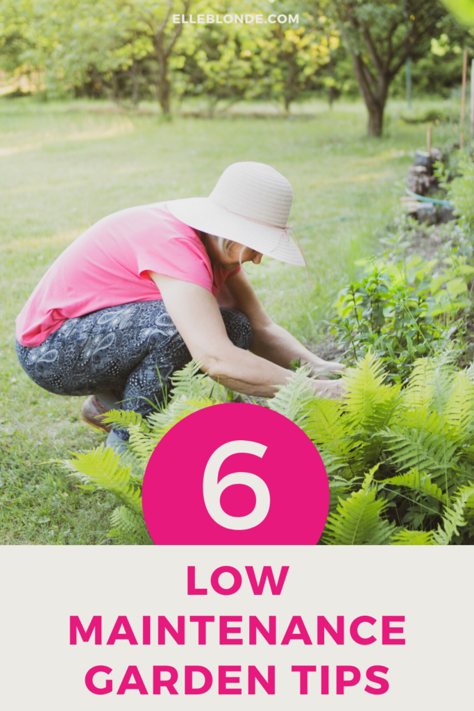 6 Ways To Create A Super Low Maintenance Garden 2