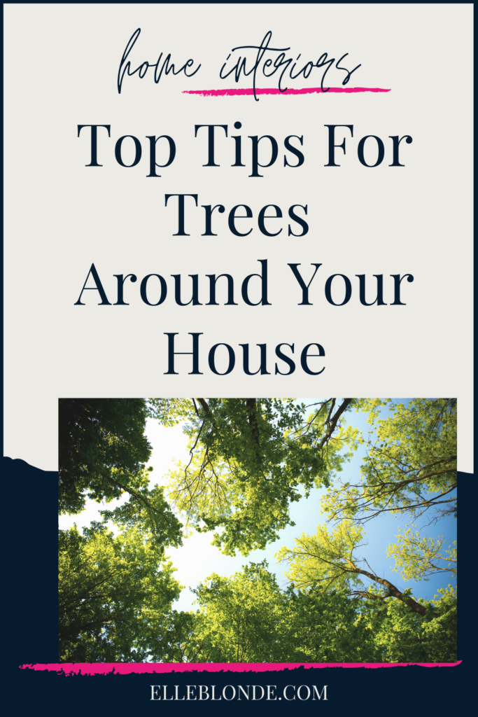 Top Tips For Taking Care Of Trees Around Your Home | Home Interior Tips | Elle Blonde Luxury Lifestyle Destination Blog