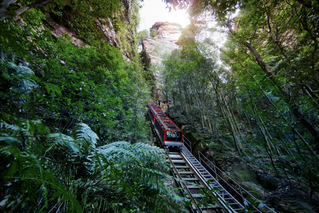 6 Must Do Day Trips from Sydney Australia 1