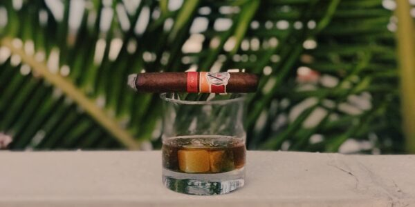 Protect your cigars | 4 Ways How to Easily Prolong the Freshness of Your Cigars | Elle Blonde Luxury Lifestyle Destination Blog