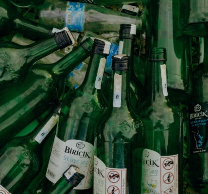 Waste Disposal: 5 Ways To Do it While in Virus Outbreak | Elle Blonde Luxury Lifestyle Destination Blog