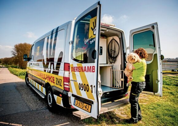 Establishment of a mobile unit for the immediate care of injured animals