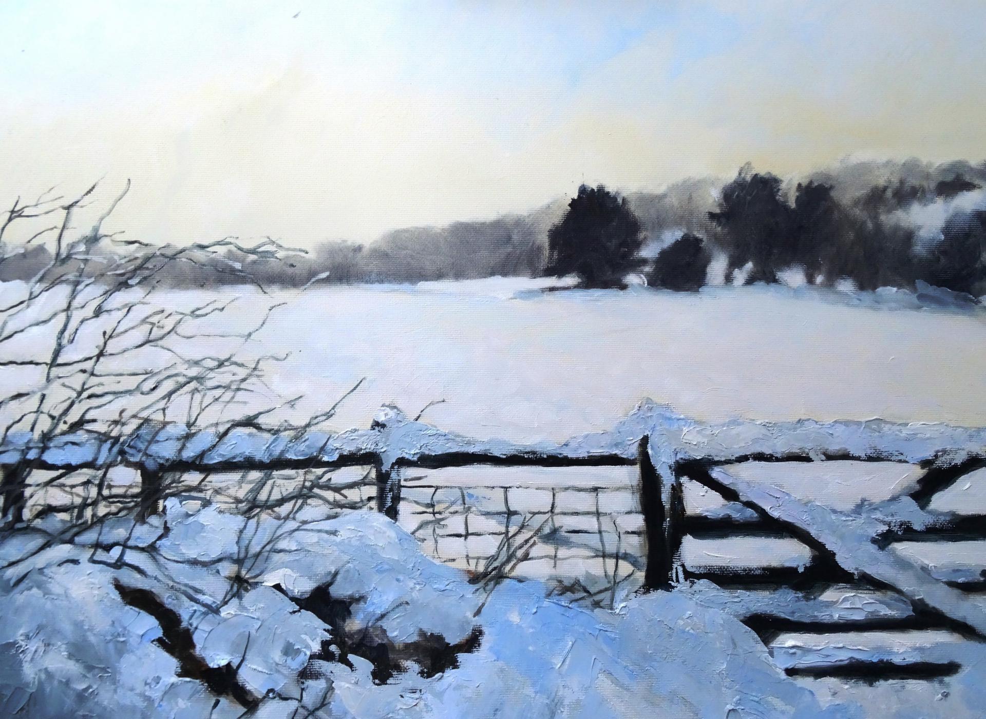 Brambles in the Snow