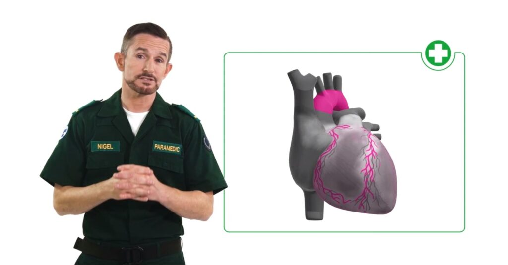 Trainer talking beside a graphical image of the heart