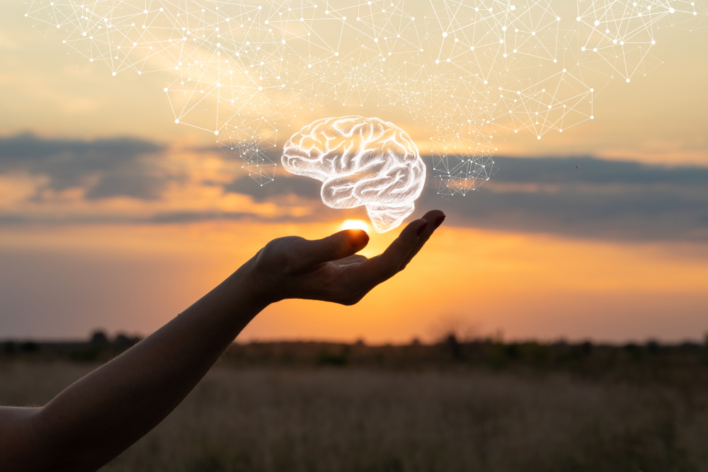 First Aid for Mental Health - Photo shows a hand cupping an illustration of the brain with the sun and sky in the background.