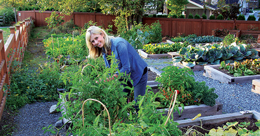 How to control weeds in your urban garden without using pesticide
