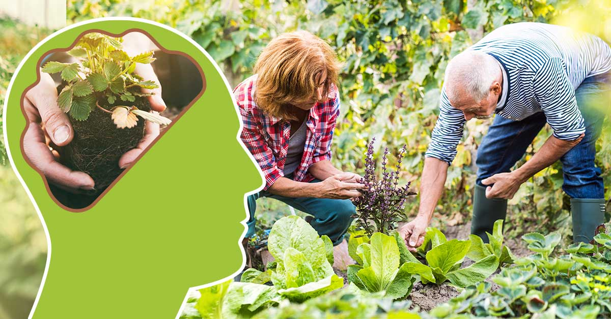 The physical, mental, and social benefits of gardening