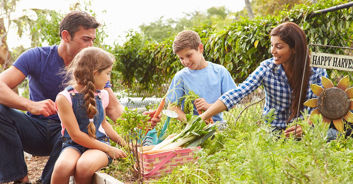 Making gardening family friendly