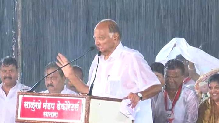 महाराष्ट्र विधानसभा चुनाव: पवार ने बारिश में भीग रैली को संबोधित किया