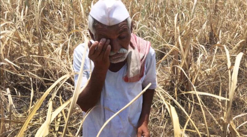 महाराष्ट्र: सूखा प्रभावित मराठवाडा से पलायन को मजबूर किसान