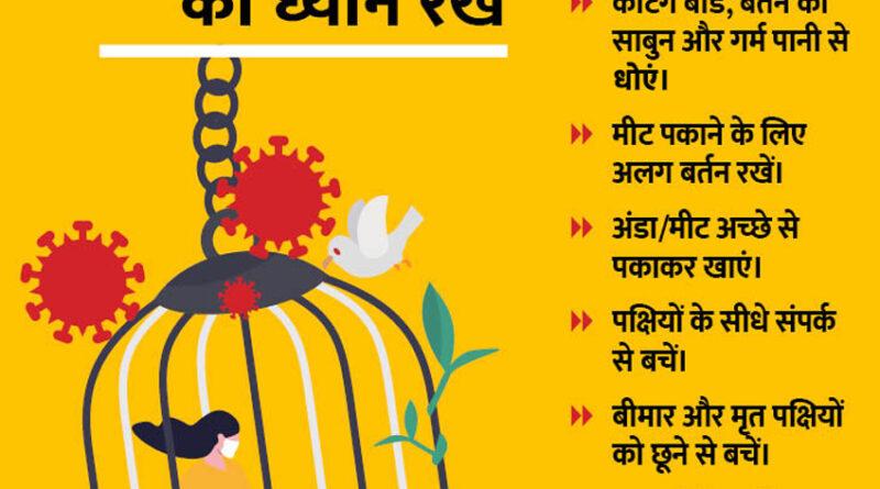 महाराष्ट्र के विदर्भ में खतरा हुआ डबल, कोरोना के साथ 'बर्ड फ्लू' ने दी दस्तक!