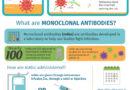 कोरोना के इलाज में प्रभावी हैं 'मोनोक्लोनल एंटीबॉडी' 24 घंटे में ठीक हुए मरीज