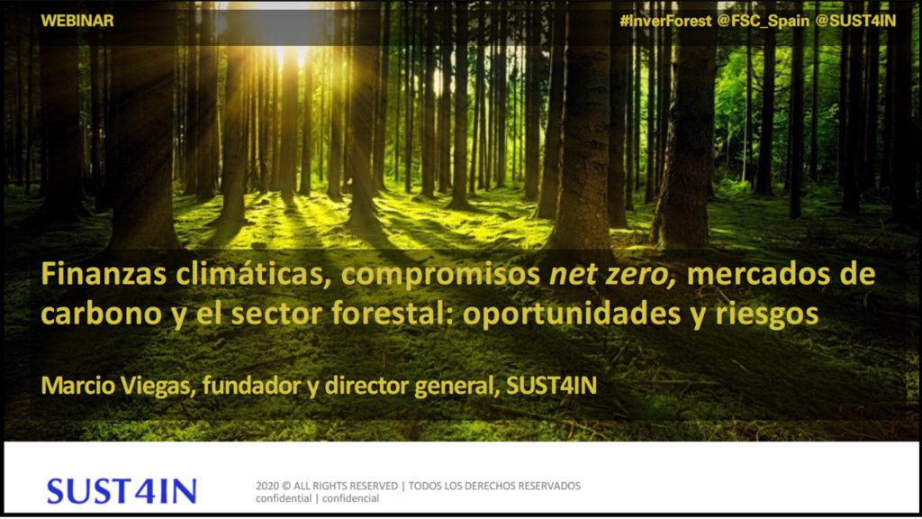 Finanzas climáticas, compromisos net zero, mercados de carbono y el sector forestal: oportunidades y riesgos
