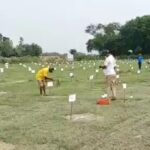 पौधरोपण कर गिनीज बुक ऑफ रिकॉर्ड में दर्ज होने पर लखनऊ वन विभाग ने कर्मचारियों को किया सम्मानित
