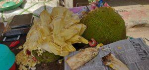 Jack Fruit at Mutanga