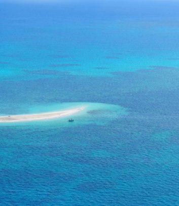 Reef photo