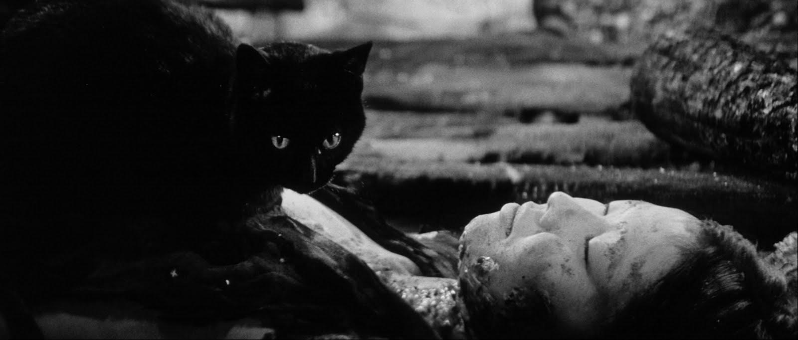 Kuroneko – El gato negro