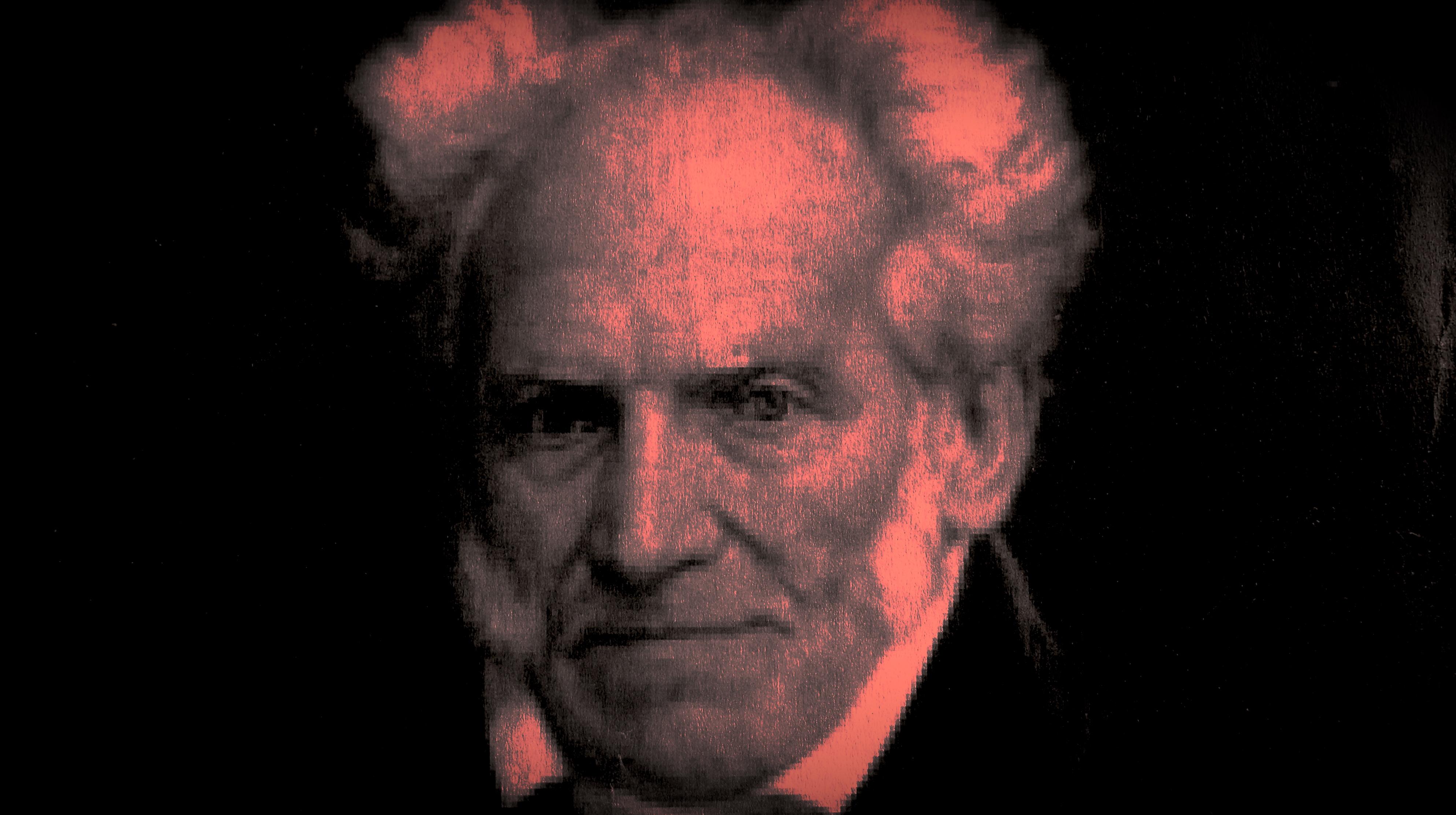 Hazlo por Schopenhauer: el proceso creativo y la obra final