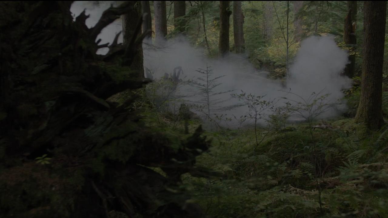 Twin Peaks. Temporada 3. Episodio 14: desdoblamiento