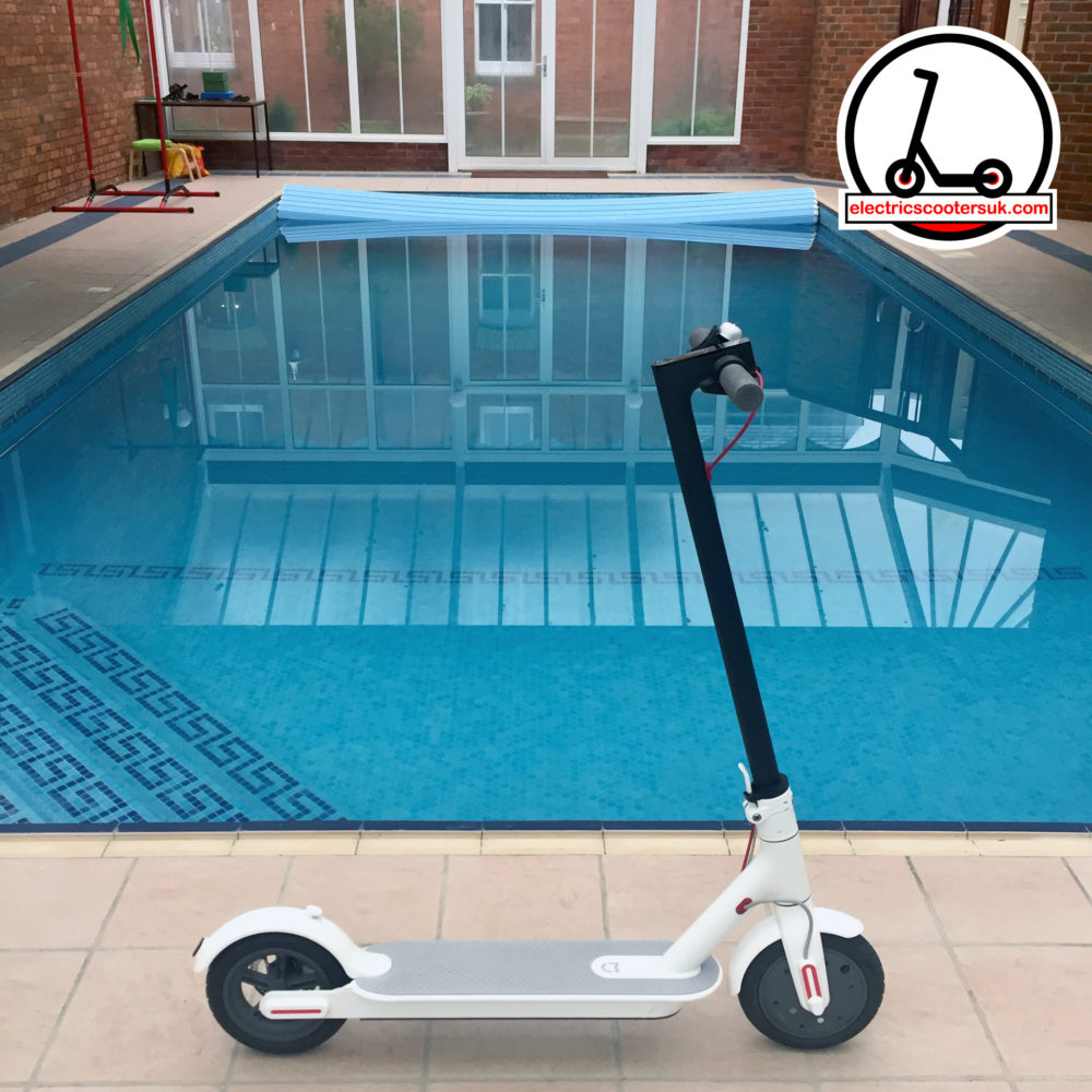 Electric Scooter relaxing by a swimming pool