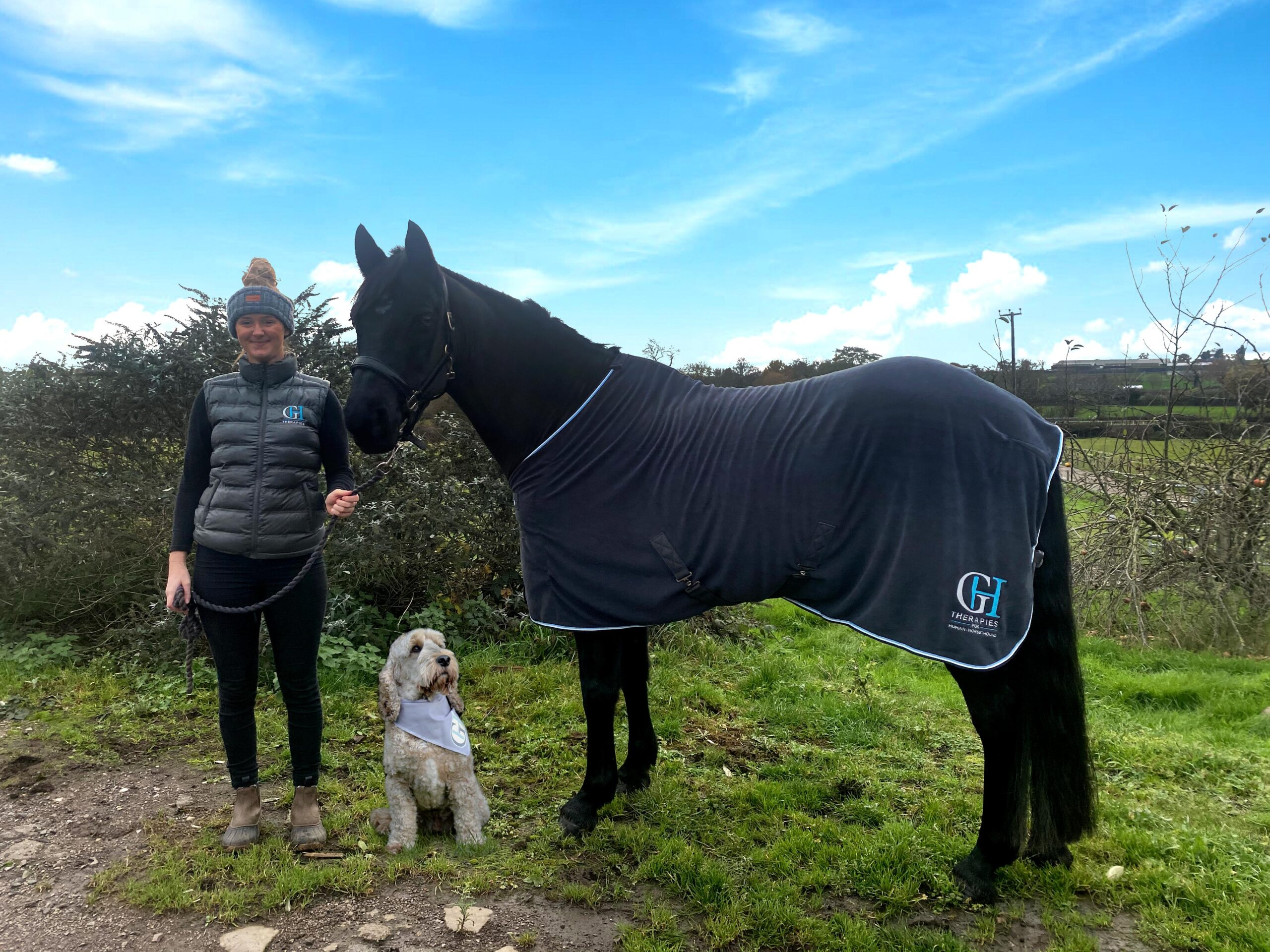 horse-and-moli
