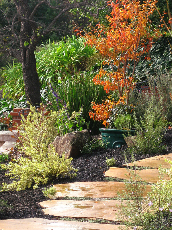 Arizona Buff slab path with low maintenance garden