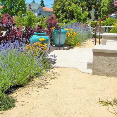 Dry Deer Resistant Garden using all natural materials and ceramic urns