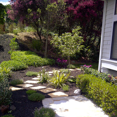 Dry deer resistant garden with black mulch and stepping stones