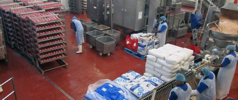 Meat Processing & abattoir Food factory Floor