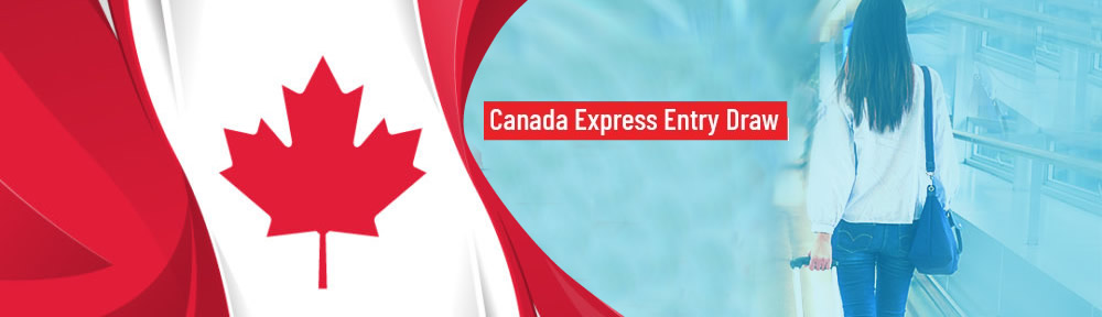 Express Entry invitation: What to do if you receive one?