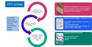 IPPO process