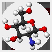 Молекулы глюкосамина