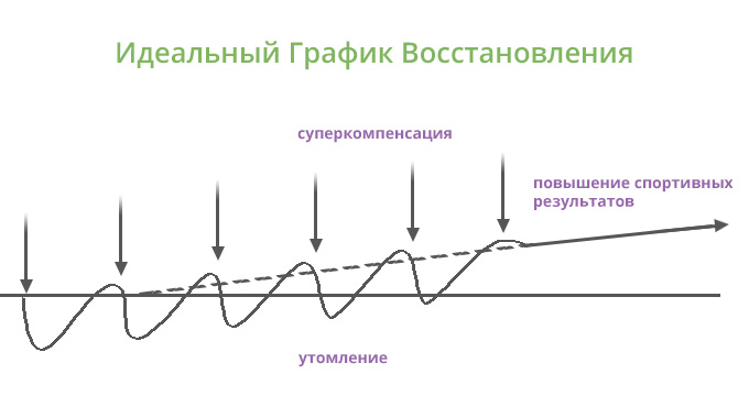 Идеальный График Восстановления